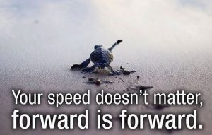 Your-Speed-Doesn-t-Matter-Forward-Is-Forward